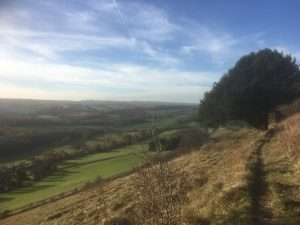 Threats to the Downs and Weald – the 'Save Leith Hill' campaign